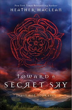 Toward a Secret Sky - medium Heather Maclean